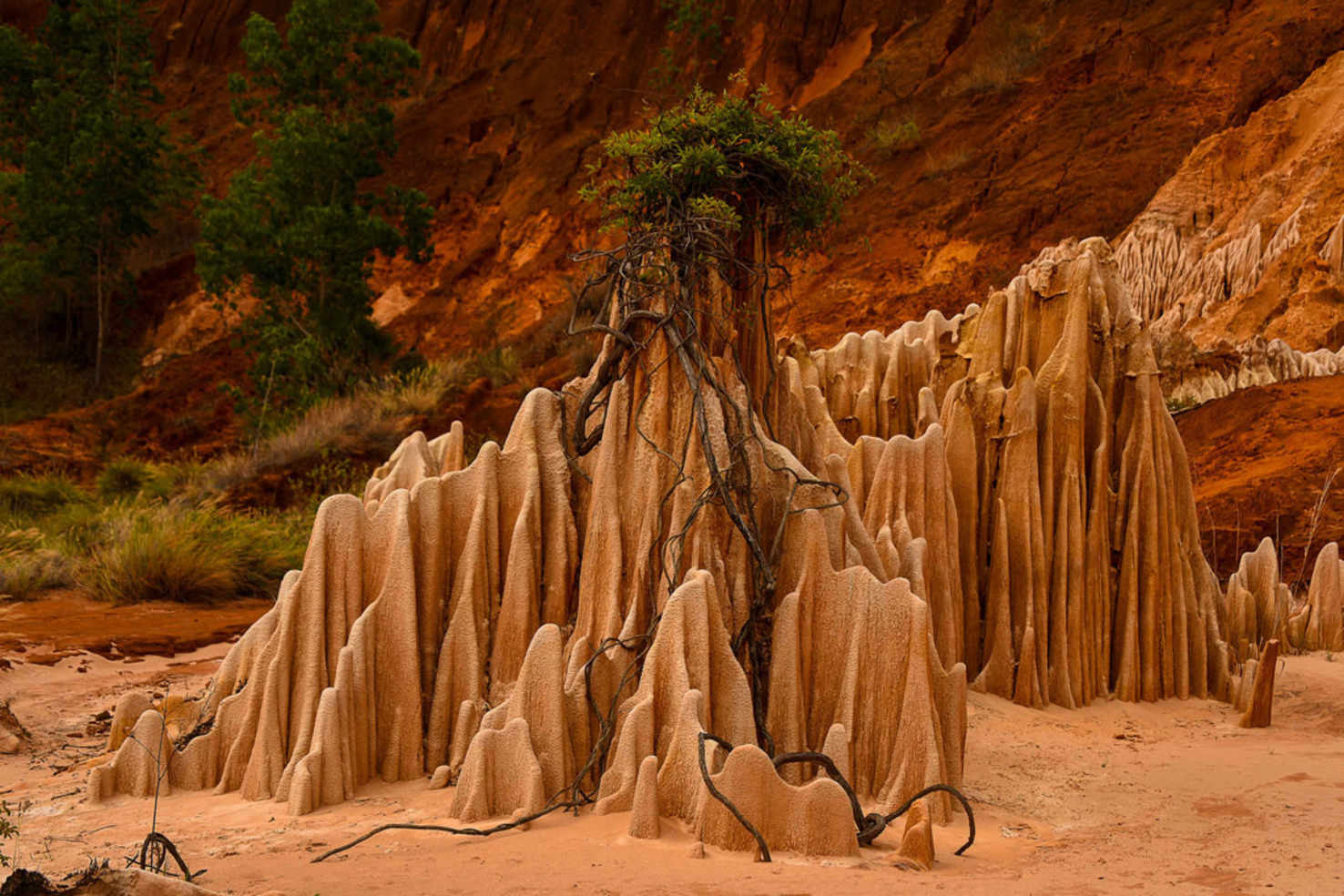 Madagascar Charm Of The North   Madagascar Vacation Package