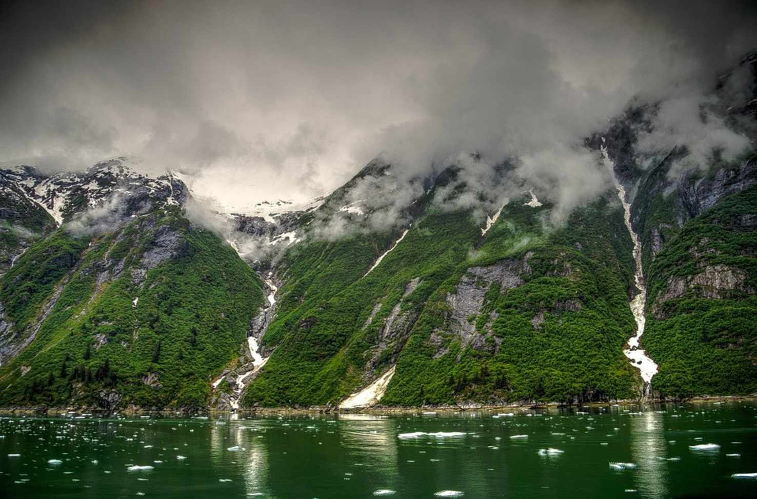 Large tracy arm