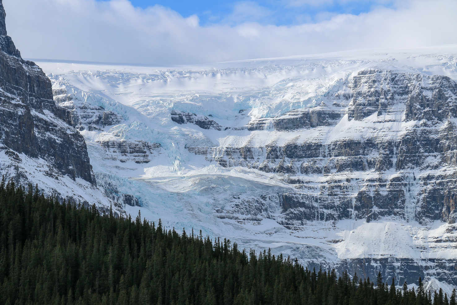 Large icefields parkway jasper