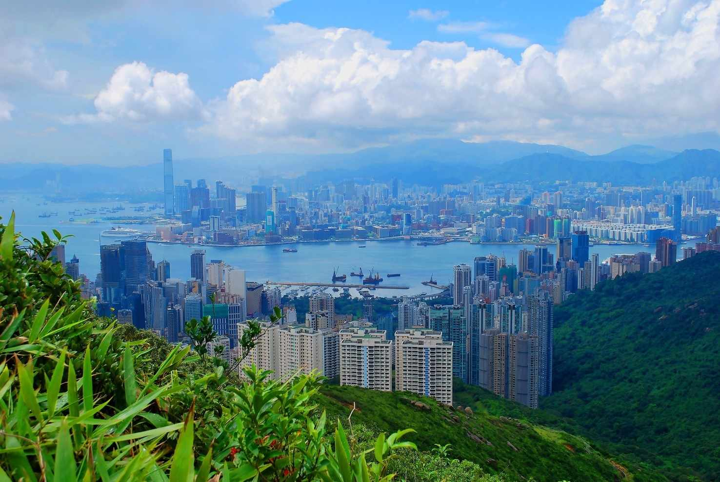 Large hong kong journey cart holidays