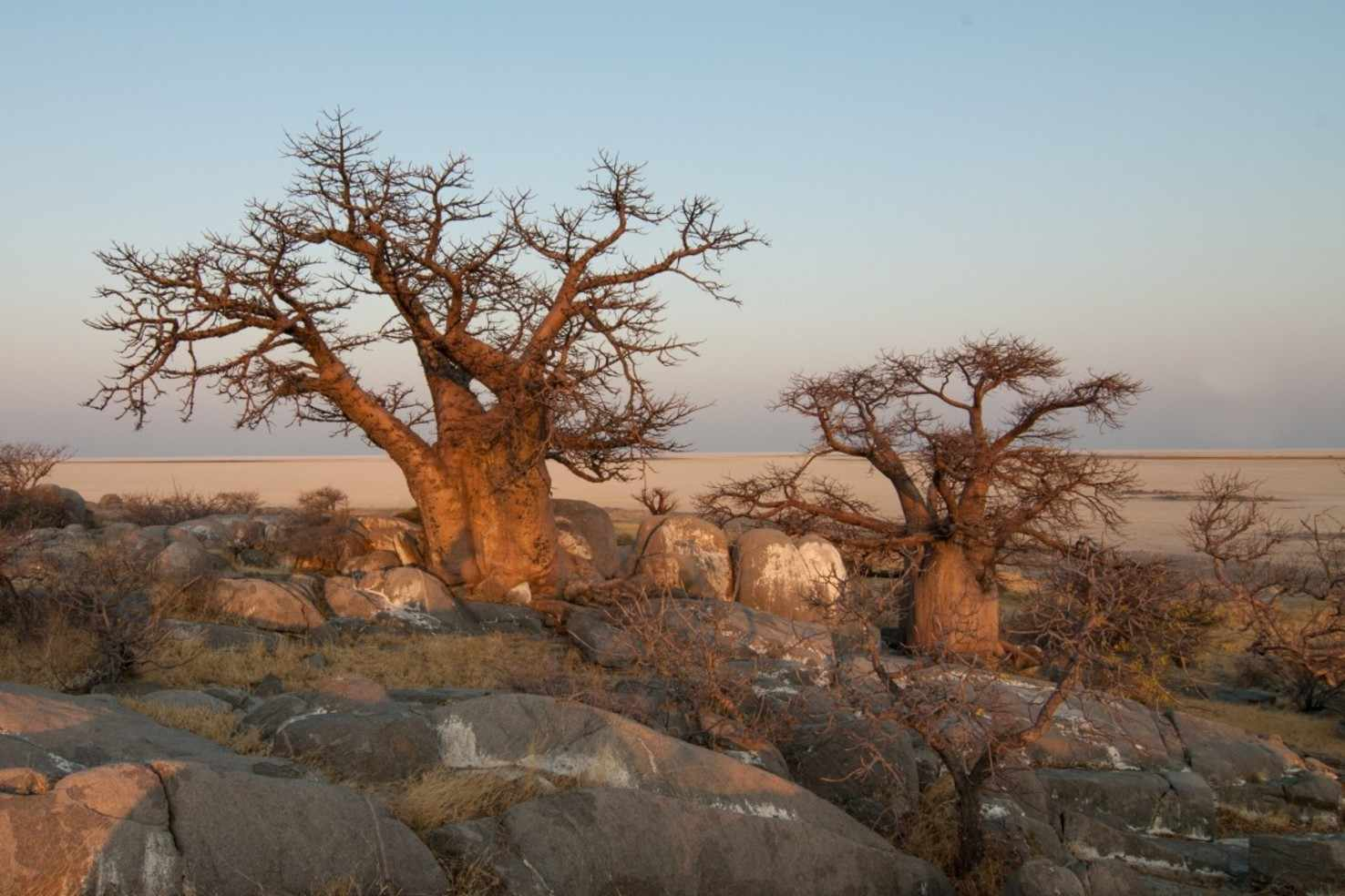 Botswana Discovery With Zimbabwe And South Africa Vacation Package