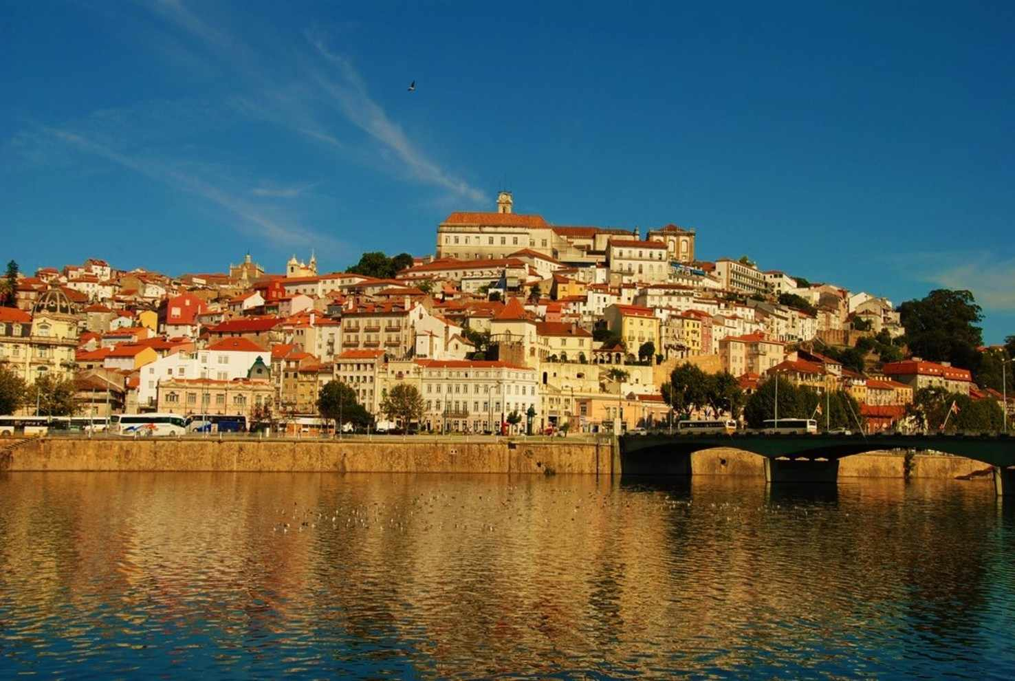 Coimbra Getaway   Portugal Tour Package