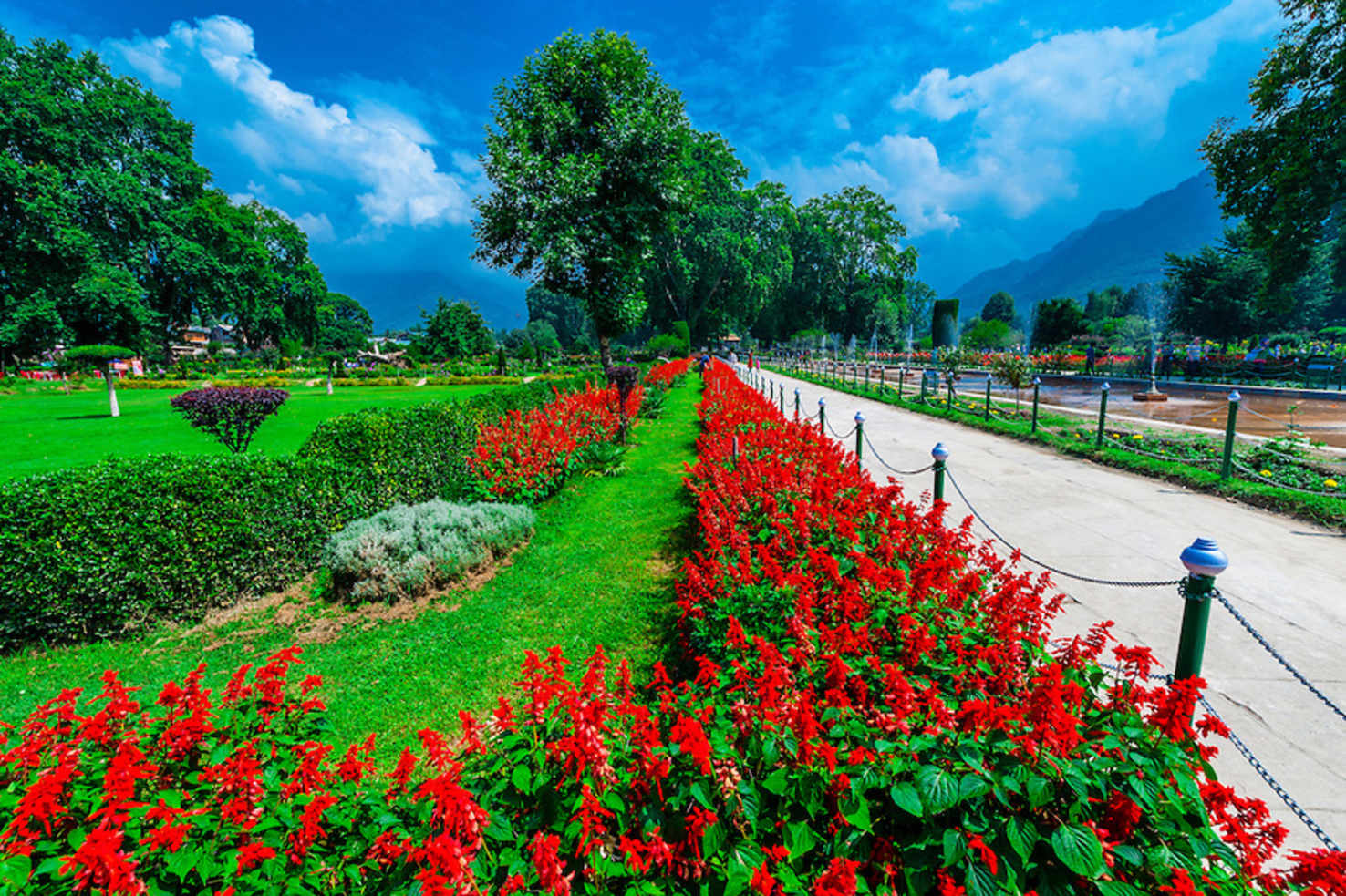 Pahalgam Trekking   India Vacation Package