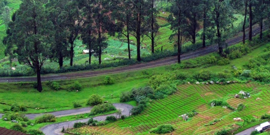 Large ooty journey cart holidays